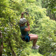 Zip Line Thrills